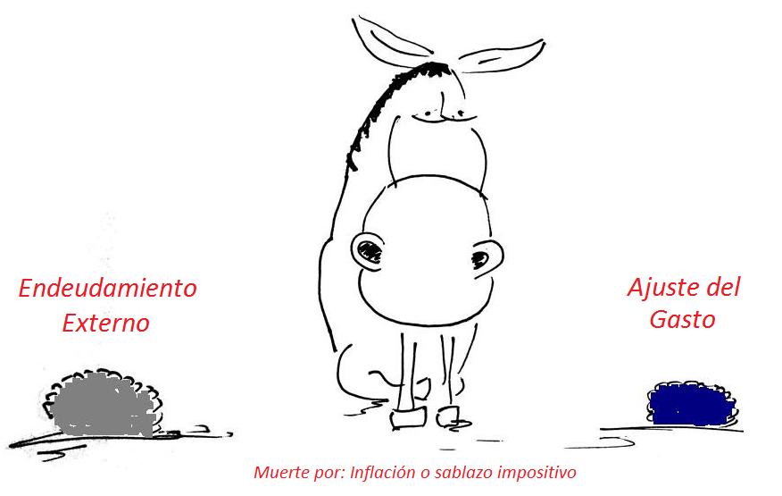 asno02 (1)